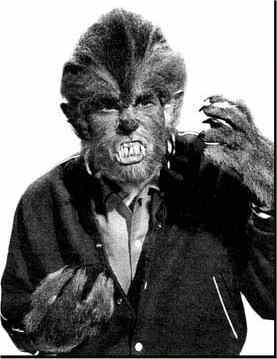 I was a teen werewolf
