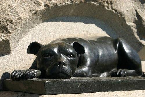 Civil War Dogs- Sallie Monument detail