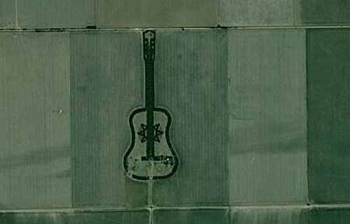 man-plants-guitar-shaped-forest-for-wife-in-pampas-argentina-6