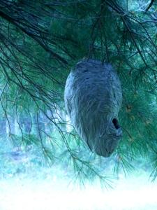 Studio Paper Wasp Nest 1 small