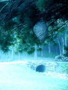 Studio Paper Wasp Nest small