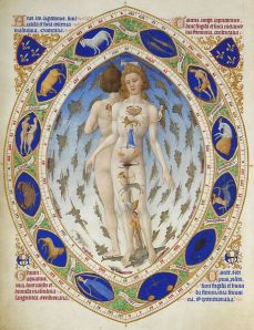 Limbourg Brothers- Anatomical Man- Tres Riches Heures du Duc de Berry February