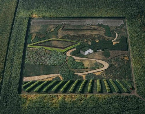 Stan Herd Land Crop Art