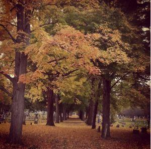 Maple Grove Cemetery Horseheads