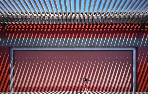 2016 Smithsonian Photo Contest Winner- The China Red- Jian Wang