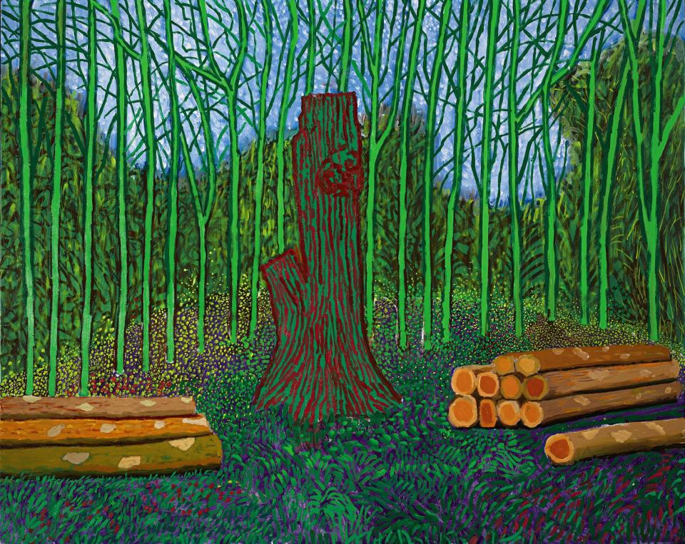 David Hockney- Arranged Felled Trees