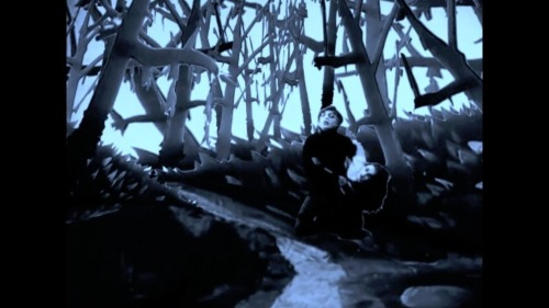 Dr Caligari Trees